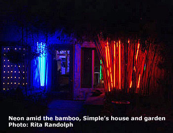 neon and bamboo